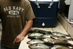 A guest at Trails End Fishing Resort loads up on crappie.